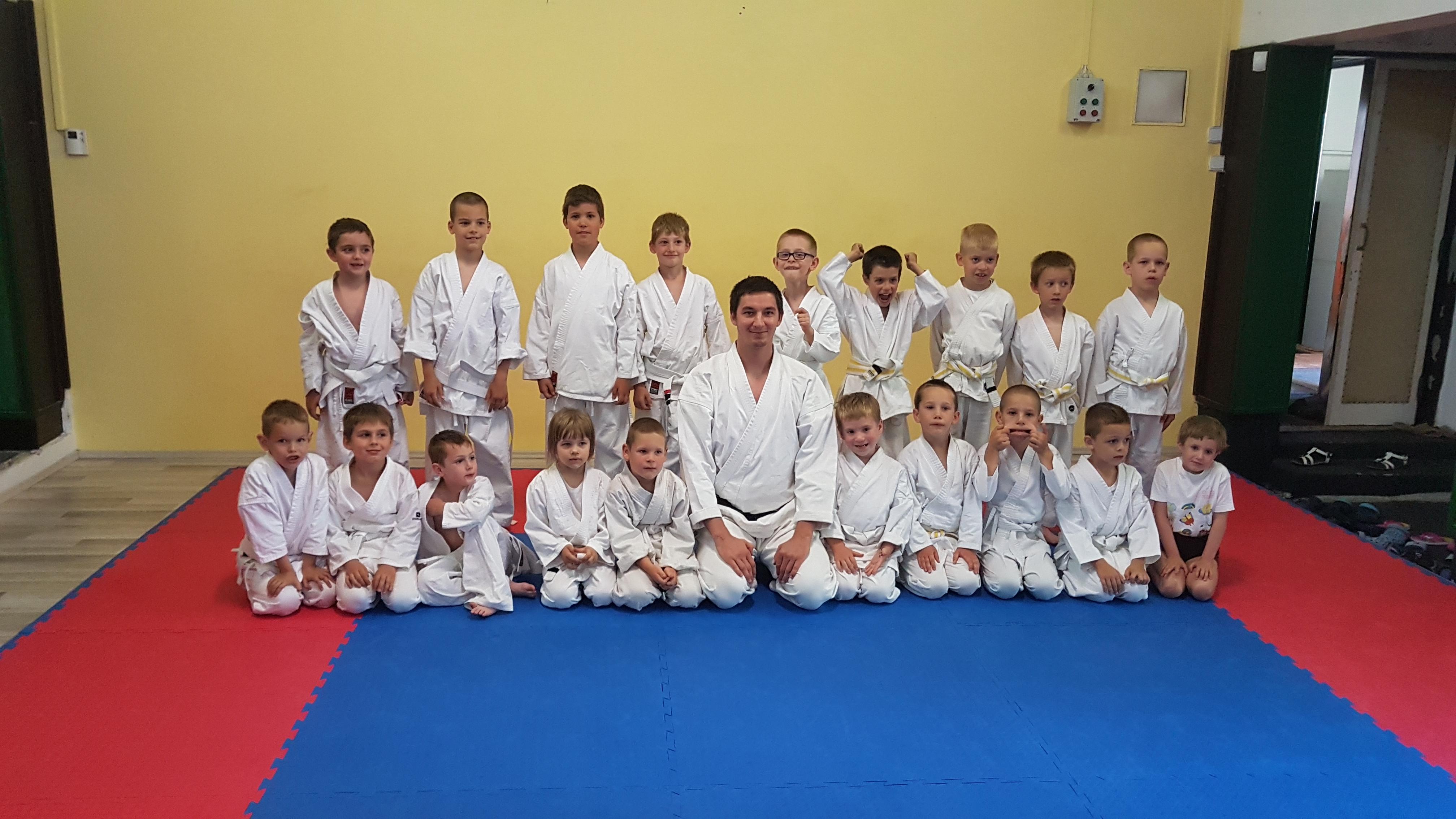 karate_nyarovis.jpg